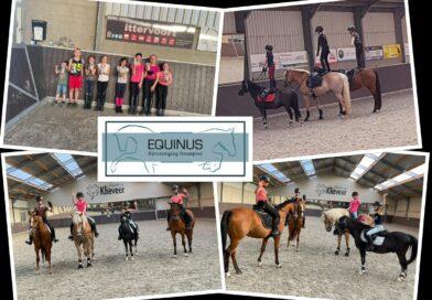 Paardensport weekend rijvereniging Equinus